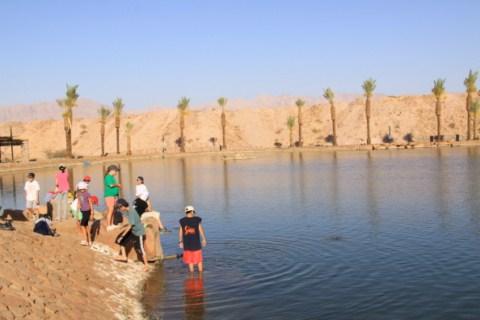 Timna Park – a desert oasis