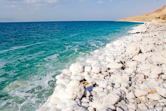 Nyüzsgő életet fedezett fel a Holt-tengerben az első búvárexpedíció